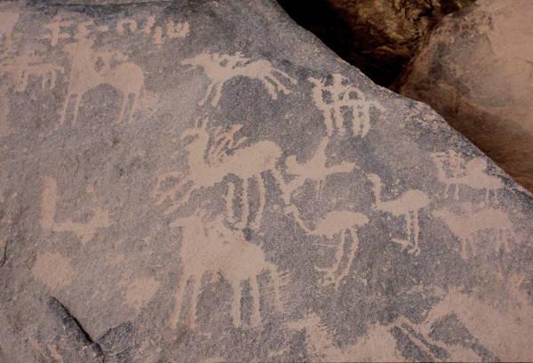 Le massif de l'Atakor est un antique musée d'art à ciel ouvert où l'on découvre des gravures et des peintures rupestres; (Photo : André Laurenti)