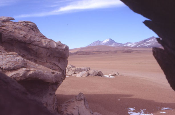 Dans les rochers environnants. (Photo : André Laurenti)