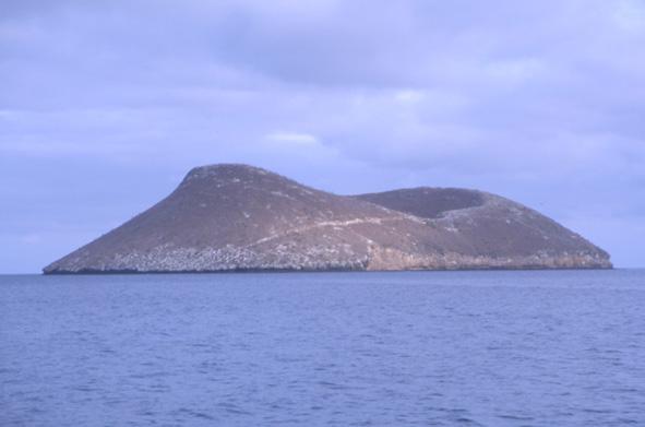 Le volcan Daphné Mayor est difficilement accessible par la mer à cause de ses parois abruptes. (Photo : André Laurenti)