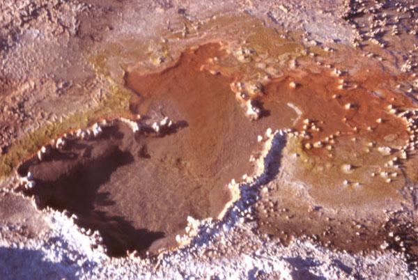 L'écoulement des eaux chargées d'oxydes colorent les micros organismes qui s'y développent. (Photo : André Laurenti)