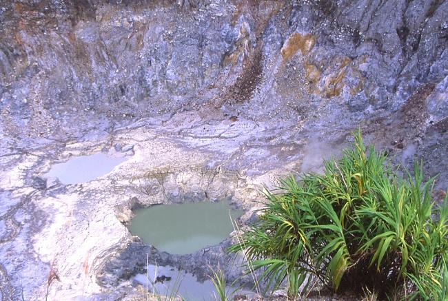 Petits lacs de boue et d'acide du Mahawu. (Photo : André Laurenti)