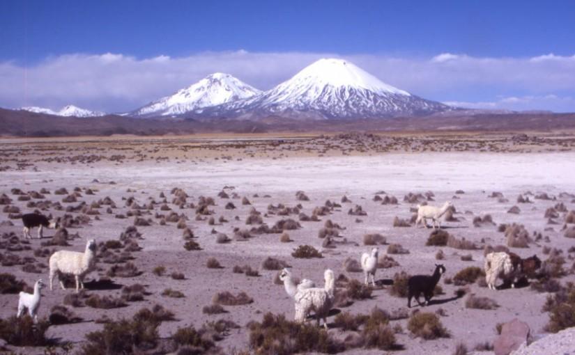 Parinacota et Pomerate (Chili)