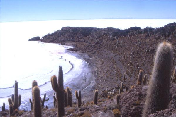 Depuis l'isla de los Pescadores, on embrasse un panorama époustouflant. (Photo : André Laurenti)