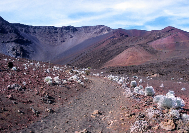 L'immense caldeira de l'Haleakala sur l'île de Maui. (Photo ; André Laurenti)