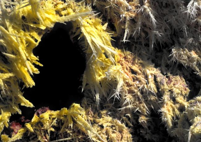 Aiguilles de soufre à proximité du Kilauea. (Photo : André Laurenti)