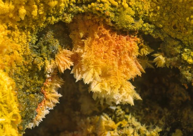 En observant de plus près, certaines concrétions prennent des allures de feuilles de fougère. (Photo : André Laurenti)