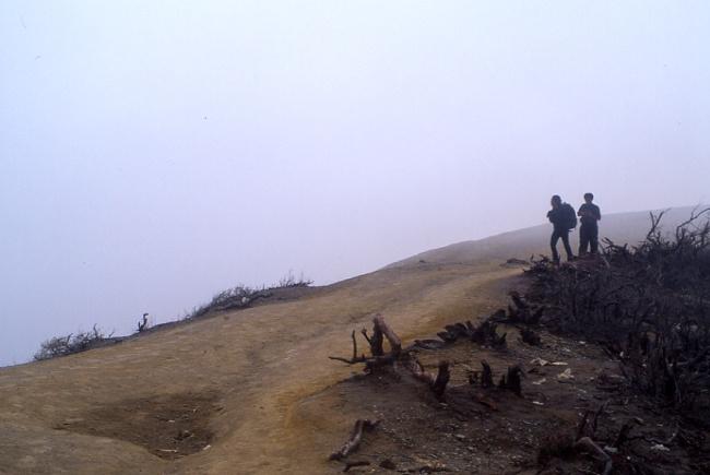 Sur le bord du cratère, la végétation est brulée par les gaz. (Photo : André Laurenti)