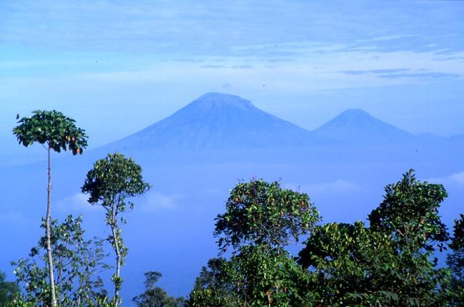 En face du Merapi se dressent les volcans Sumbing et Sundoro. (Photo : André Laurenti)