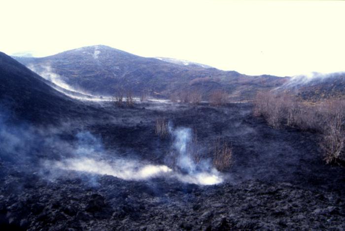 Au pied du Monte Nero les fumerolles sont présentes. (Photo : André Laurenti)