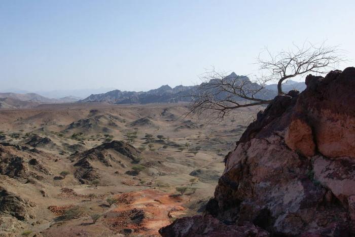En prenant de la hauteur on découvre l'étendu aride de la région. (Photo : André Laurenti)
