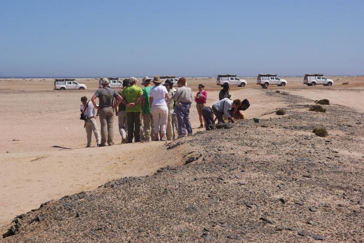 Notre petit convoi s'immobilise pour une lecture de paysage (Photo : André Laurenti)
