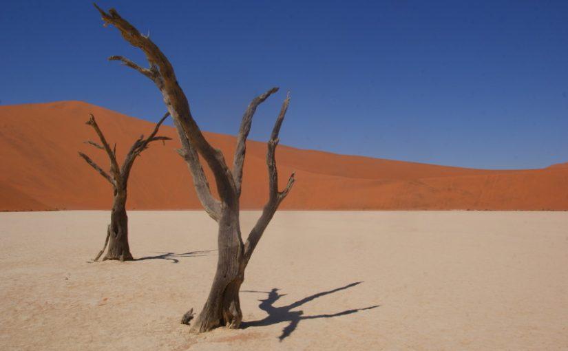 Namibie, un fascinant monde à l'envers