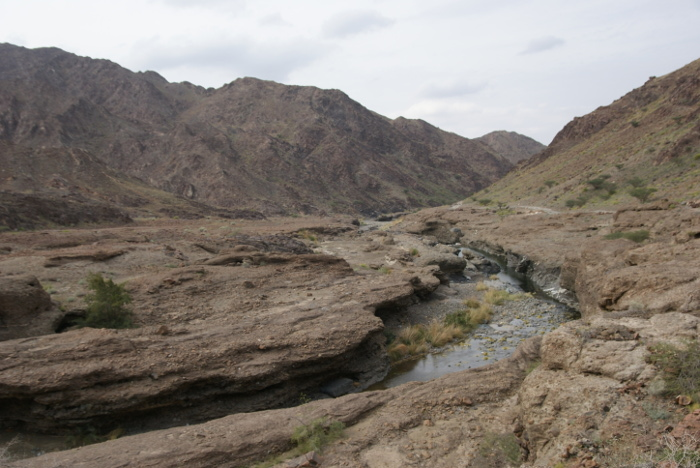 Le wadi Haymiliyah (Photo : André Laurenti)