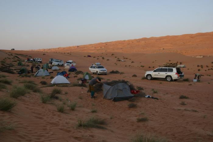 A la limite des premières dunes, c'est le réveil (Photo : André Laurenti)