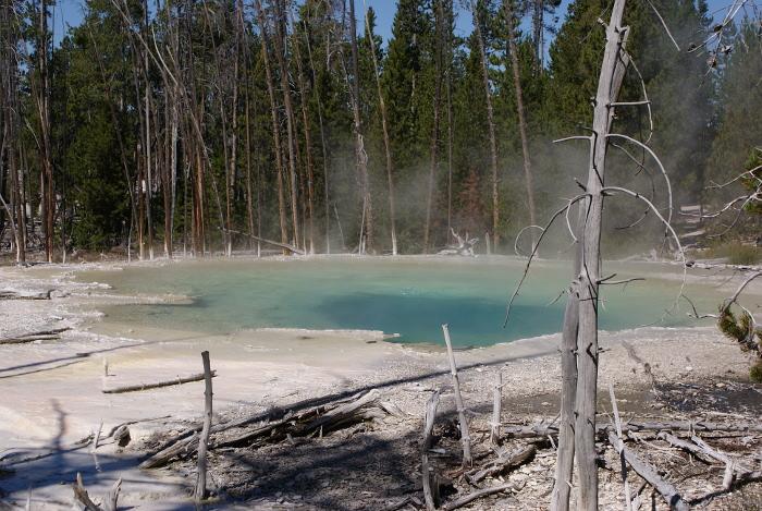 Cistern Spring dans le site de Norris Geyser Basin (Photo : André Laurenti)